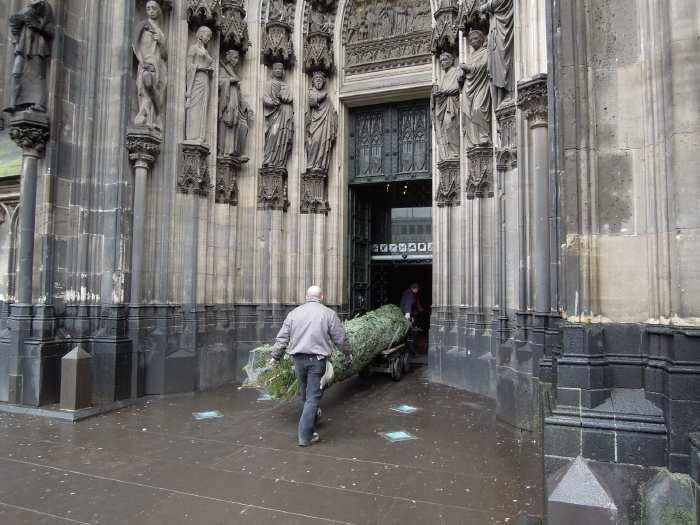 — Sapin en route vers l'autel - Cologne —