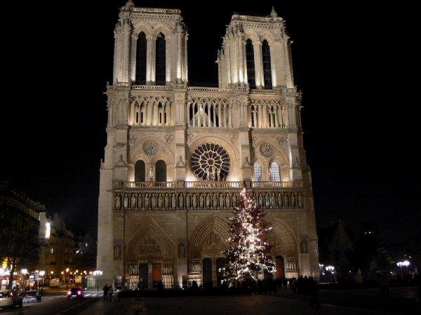 Cathédrale Notre Dame de Paris et son sapin de Noël