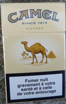 Pyramide Camel