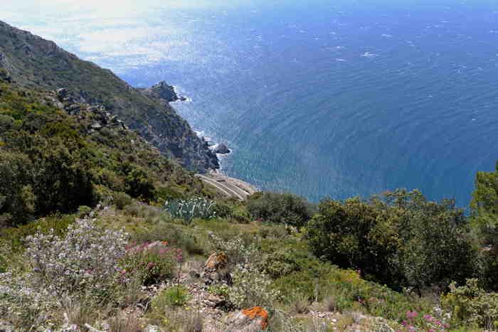 Vue de la mer en contre plongée depuis le sommet du Cap Sicié — Commune de Six-Fours-Les-Plages