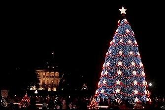 Arbre de Noël USA 2001