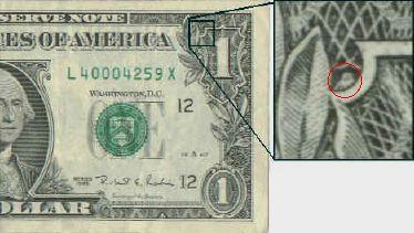 Chouette sur le dollar