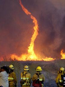 firetorn