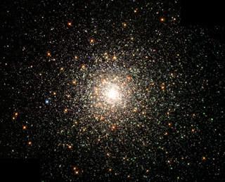 Amac d'étoiles