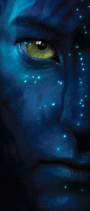 Détail Avatar