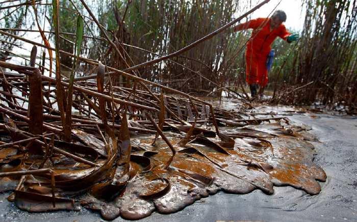 — Estuaire du Mississipi souillé par le pétrole de chez bp — Golfe du Mexique — Mai 2010 —