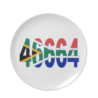 Pin drapeau Sud Africain 46664
